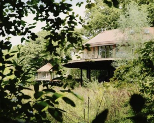 Chewton Glen Treehouses - Lost within the forest